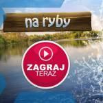 Gra Na Ryby - Let's Fish