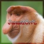 JanuszOrPL JanuszOrPOLAND Profile Picture